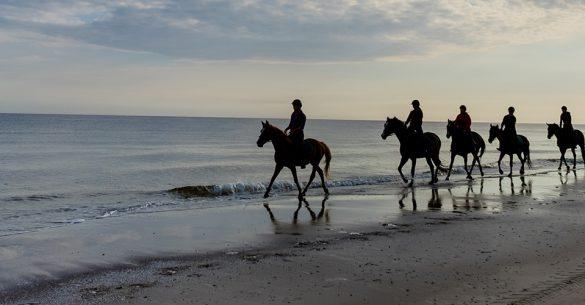 Horse Riding at Comporta Beach
