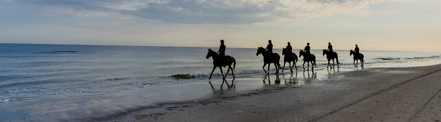 Horse Riding at Comporta Beach